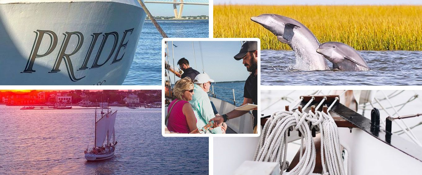 Experience the Charleston Dolphin Cruise Aboard the Schooner Pride