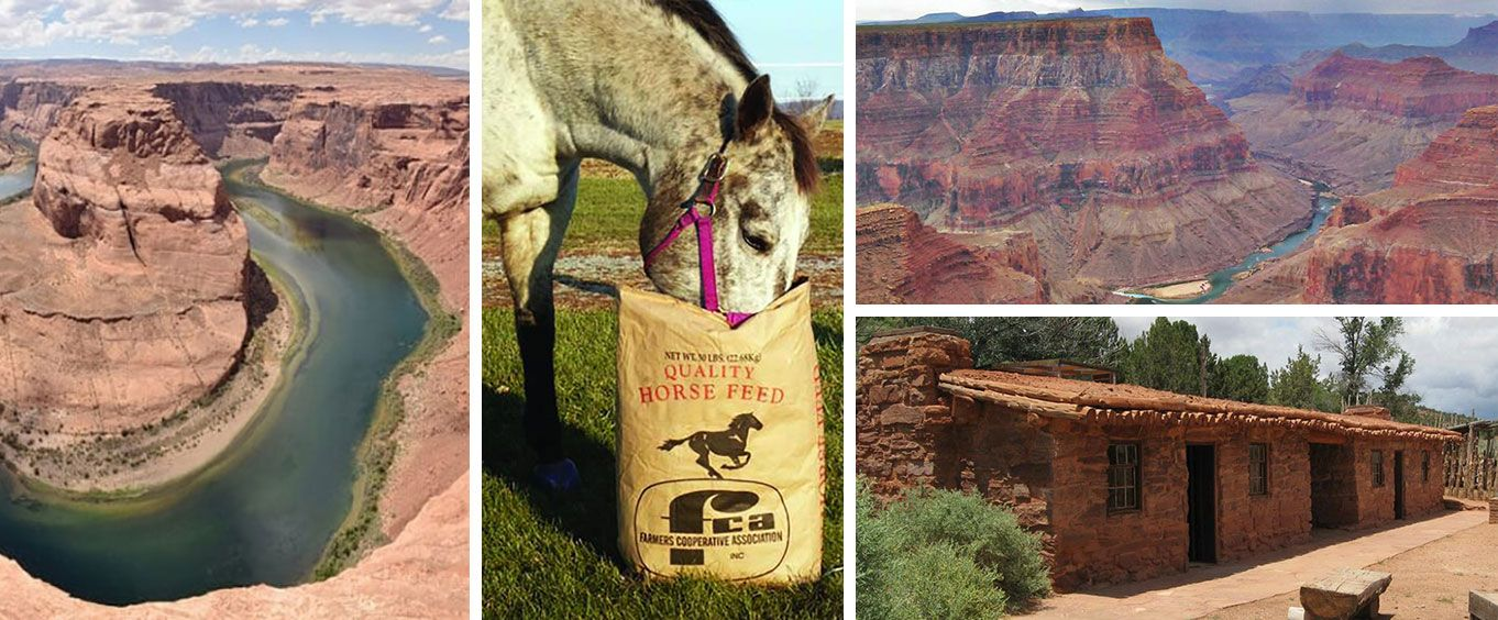 Enjoy the Grand Canyon Tour from St George Utah