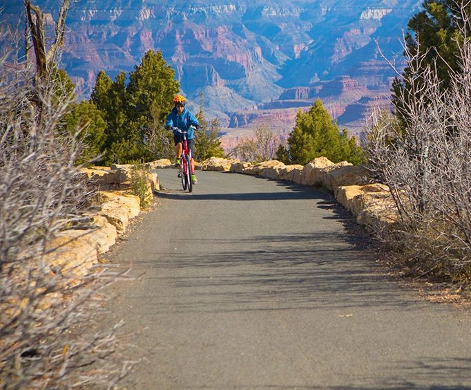 Biking Through the Canyon with the Grand Canyon Yaki Point Bicycle Tour