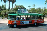 San Diego Shore Excursion: San Diego Hop-On Hop-Off Trolley