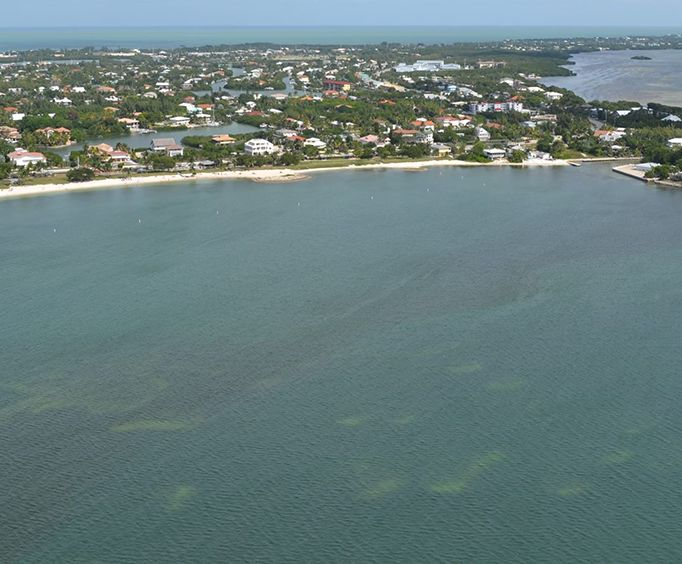 Amazing Views on the Florida Keys Helicopter Tours