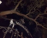 Secrets of St Augustine Ghost Tours