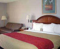 Photo of Comfort Inn South Room