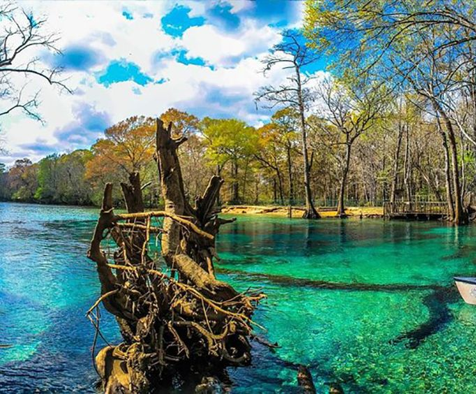 Cypress Springs Water Adventure Tour