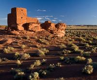 Incredible Ruins with the Comprehensive Grand Canyon Tour from Flagstaff