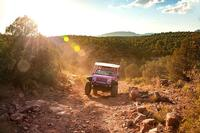 Explore with Diamondback Gulch Jeep Tour