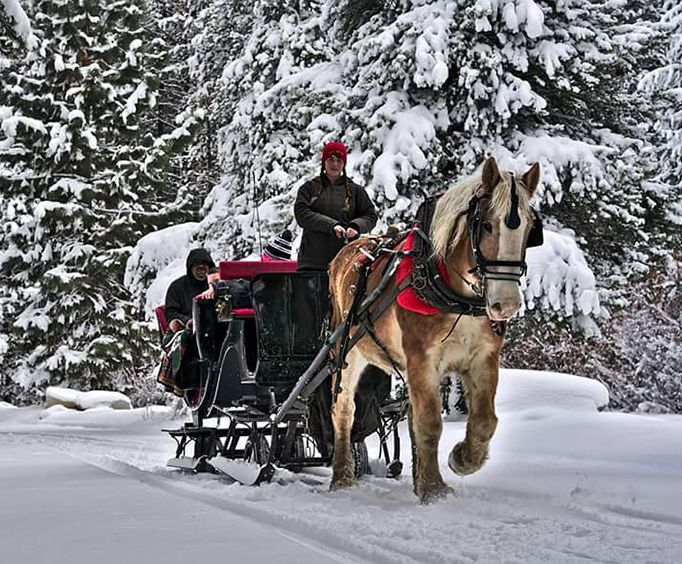 Sunset Sleigh Ride and Dinner