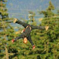 Ziptrek Bear Tour