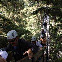 Ziptrek Eagle Tour