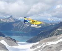 Glacier Sightseeing Experienc...
