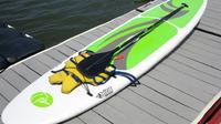 Have an adventure with a paddle board rental!