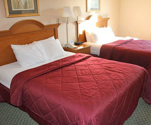Photo of Comfort Inn & Suites Chesterfield, MO Room