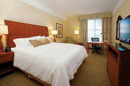 Room Photo For Hilton Garden Inn Detroit Southfield