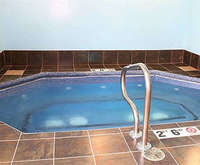 Comfort Inn & Suites Melvindale Indoor Pool