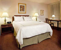 Photo of Mark Spencer Hotel Room