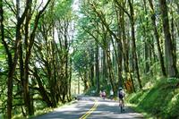 Bike the First National Scenic Highway