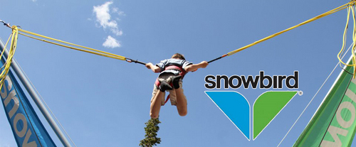 Snowbird Summer Activities - All Day Unlimited Pass, bounce