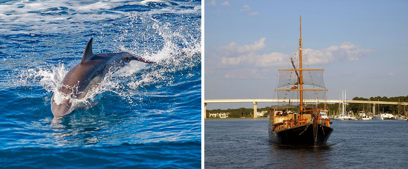 Hilton Heads Pirate Ship Dolphin Tour Collage