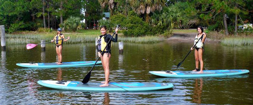 Stand Up Paddleboard Eco Tour in Jacksonville, FL
