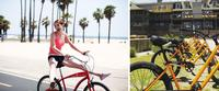 Beach Cruiser Weekly Bike Rental on the Outer Banks Collage