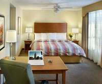 Homewood Suites by Hilton Allentown-Bethlehem Airport Indoor Swimming Pool