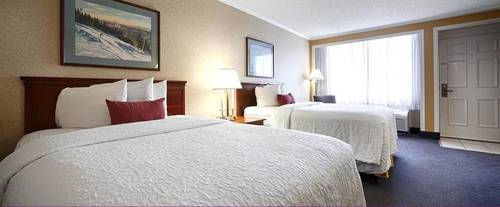 Room Photo for Best Western Lehigh Valley Hotel & Conference Center