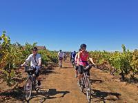 Sonoma Cycling Wine Tour