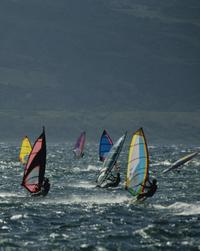 Visit Maui's world-famous windsurfing beach, Ho'okipa, and get the chance to see some sailboarders in action!