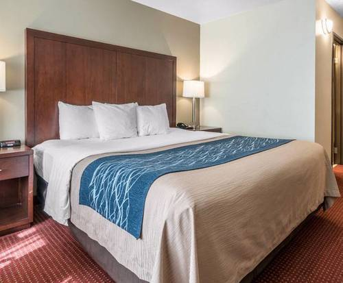 Comfort Inn Lacey -...