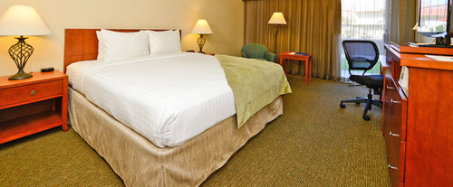 Best Western Phoenix Airport Inn Room Photos