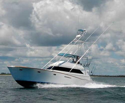 Gulf stream fishing charter in west palm beach florida for Fishing charters west palm beach