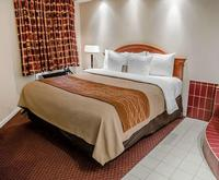 Comfort Inn - Toronto Northea...