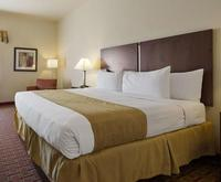 Best Western Tampa Room Photos