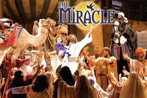 The Miracle Bible Stories Brought To Life