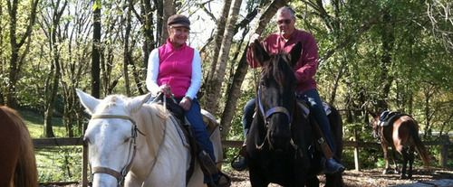 1 Hour Smoky Mountains Horseback Ride