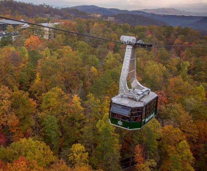 Tram Over the Beautiful Fall Leaves