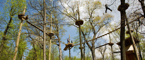Lancaster Zipline at Refreshing Mountain Camp, canopy