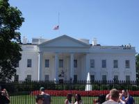 Guided Tour of Washington DC