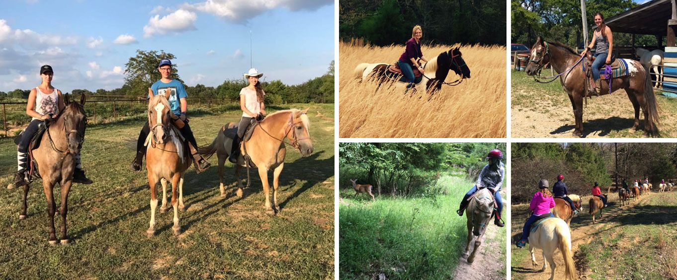 Amazing Experiences with Shelby Farms Stable Rides