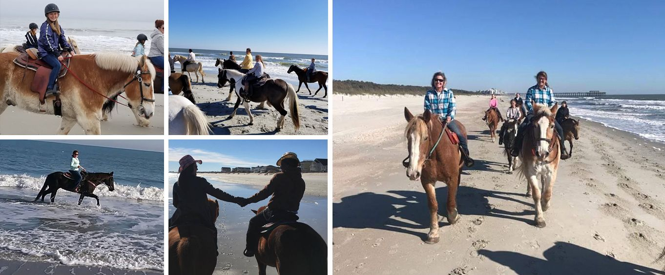Grand Strand Myrtle Beach Horseback Rides On The Beach Collage